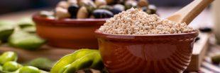 Alimentation : Faut-il bannir la lécithine de soja ?