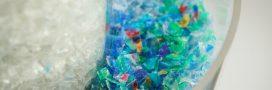 Pollution: L'UE va-t-elle interdire la quasi-totalité des micro-plastiques?