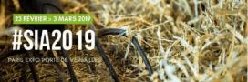 Tout le programme du Salon de l'Agriculture 2019