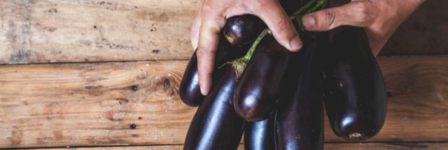 Association de culture : bonnes et mauvaises fréquentations de l'aubergine