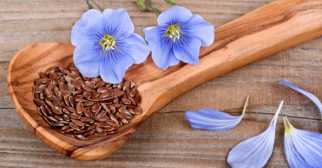 Comment consommer les graines de lin?