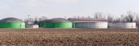 Les digestats de la méthanisation: un 'fertilisant écologique' empoisonné?