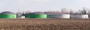Les digestats de la méthanisation : un 'fertilisant écologique' empoisonné ?