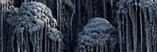 Pollution: une neige noire recouvre trois villes en Sibérie