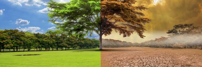 Réchauffement climatique : les mesures drastiques à prendre d'ici 2030