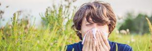 Les meilleurs aliments anti-allergie aux pollens