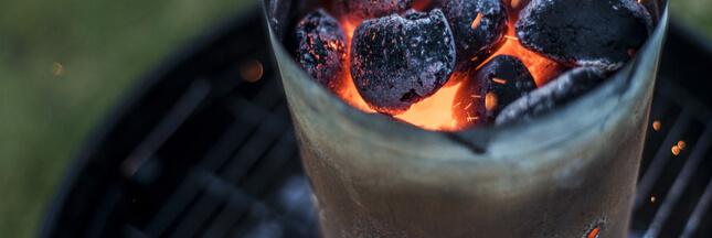 Quel charbon de bois pour vos barbecues cet été?