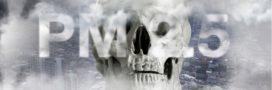 De combien de morts la pollution de l'air est-elle vraiment responsable chaque année?