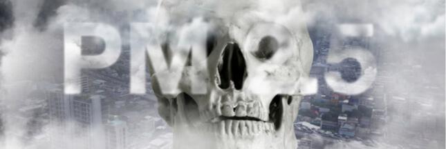 De combien de morts la pollution de l'air est-elle vraiment responsable chaque année ?