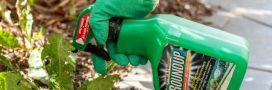 Le glyphosate serait-il aussi un perturbateur endocrinien?