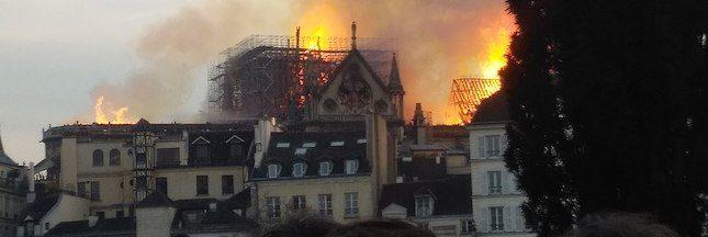 Notre-Dame : la filière bois se mobilise