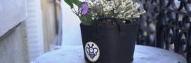 Portrait d'éco-acteur – Avec BeeBar, Coraline offre des tournées de fleurs aux abeilles
