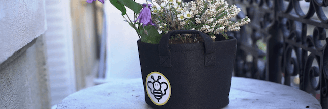 Portrait d'éco-acteur - Avec BeeBar, Coraline offre des tournées de fleurs aux abeilles