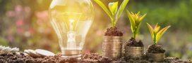 Energie: Vers une nouvelle classification de l'électricité verte?