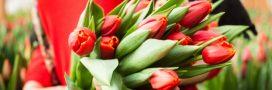 Bouquet de saison: quelles fleurs au printemps?