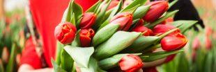 Bouquet de saison : quelles fleurs au printemps ?