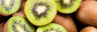 Comment faire germer un pépin de kiwi