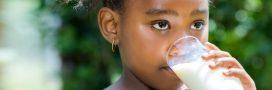 Nouveau scandale agroalimentaire: l'UE exporte du lait à l'huile de palme en Afrique de l'Ouest