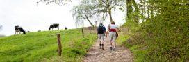 Profiter des beaux jours pour randonner à la rencontre des paysans de nos terroirs
