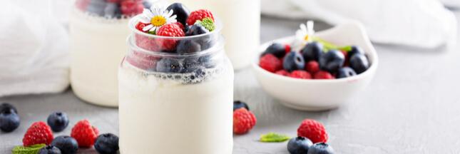 Yaourtière et yaourt fait maison : avantages et recette