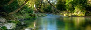 Nos lacs et rivières regorgent-t-ils de perturbateurs endocriniens ?