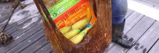 Des sacs en bioplastique pas si biodégradables que ça !