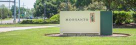 Un agriculteur français remporte une troisième victoire en justice contre Monsanto
