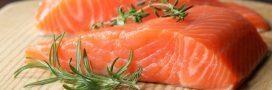 Trouvera-t-on bientôt du saumon transgénique dans nos assiettes?