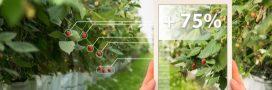 Agro-écologie: comment les agriculteurs s'engagent