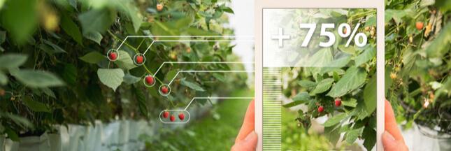 Agro-écologie : comment les agriculteurs s'engagent