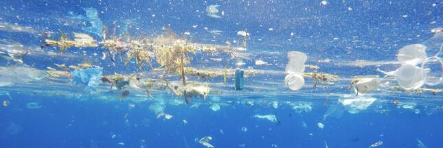 Marseille accueillera la première compétition de ramassage de déchets en mer
