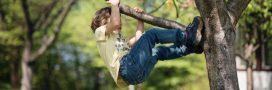 Grimper aux arbres est moins dangereux que de faire du sport