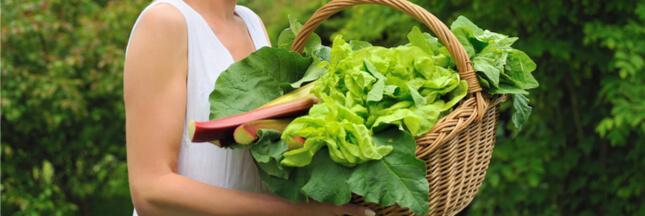 Fruits et légumes de saison: le panier AMAP du mois de mai