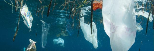 Une nouvelle île découverte en Méditerranée... 100% plastique