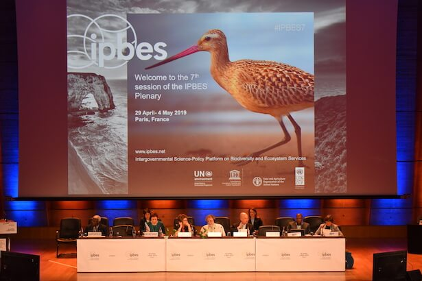 rapport IPBES