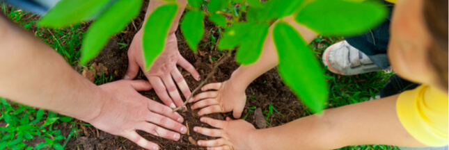 Semaine du développement durable : participez à l'édition 2019 !
