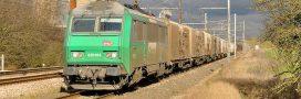 Le dernier train des primeurs de Rungis remplacé par 20.000 camions?