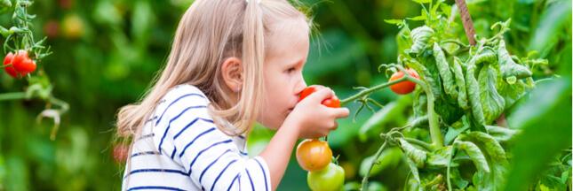Mon enfant est végétarien ! Comment éviter les carences ?
