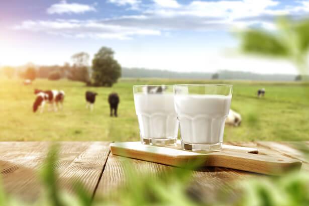 lait ecolo