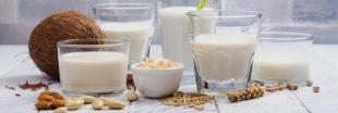 Duel écologique: lait végétal vs. lait animal