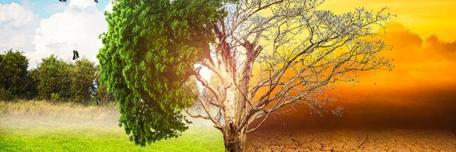Climat: et si on parlait d'espoir au lieu d'apocalypse?