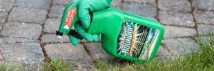 Le Roundup toujours en vente dans les jardineries ?