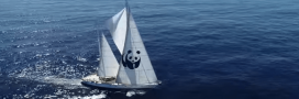 L'Odyssée du Blue Panda, le navire du WWF, pour la sauvegarde de la Méditerranée