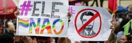 Pesticides, OGM… Faut-il boycotter les produits brésiliens?