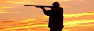 Biodiversité: la chasse de deux espèces fragiles est à nouveau autorisée