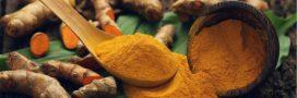 Santé au naturel – Comment mieux choisir son curcuma?