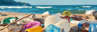 L'île Henderson, un joyau écologique noyé sous les déchets plastiques