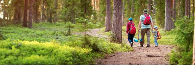 En forêt, sensibilisez les enfants aux écogestes !