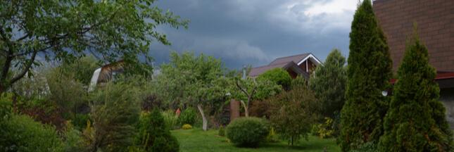 Que faire au jardin après un orage ou une tempête ?