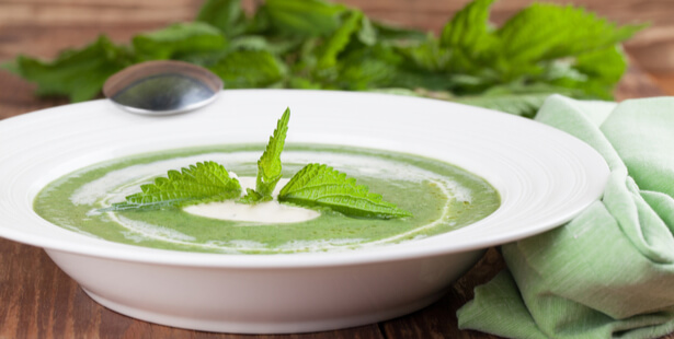 recette soupe détox d'ortie